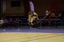 B-masters 15+ (Oostende) - 16/11/2013_55