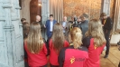 Huldiging Stad Mechelen - WK2016_5