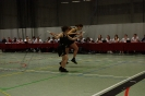 Prov. Kampioenschap Teams +15 - 22/02/2014 - Bierbeek_65