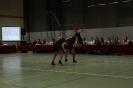 Prov. Kampioenschap Teams +15 - 22/02/2014 - Bierbeek_69
