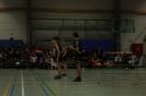 Prov. Kampioenschap Teams Beloften - 23/02/2014 - Bierbeek_199