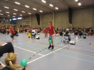 Recreacup - 30-31 januari 2016 - Oudenaarde