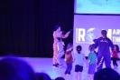 ROM Show 2017_16